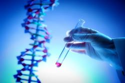 Минобрнауки: программа развития генетических технологий снизит внешнюю зависимость