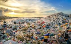Ученые из РФ и Индии создали биоразрушаемый пластик