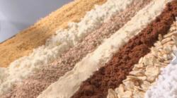 Ученые на Дальнем Востоке создали новую технологию синтеза белка для обогащения кормов