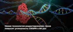 Новая технология редактирования генов повысит успешность CRISPR в 80 раз