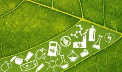Био-продукты для устойчивой биоэкономики