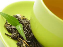 Российские и китайские ученые расшифровывают геном чая