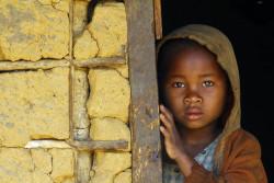 Мировой голод не снижается в течение последних трех лет, а ожирение продолжает набирать обороты — доклад ООН