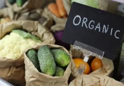 Органика без обмана. С 1 января вступят в силу стандарты для экопродукции
