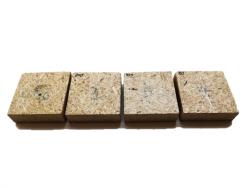 Ученые изучили композиты на основе сахарного тростника