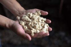 Работник АНХК придумал, как получить экологичное моторное масло на основе сырья из отходов целлюлозы