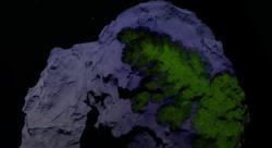 Астробиологи отправили на МКС 18 штаммов бактерий