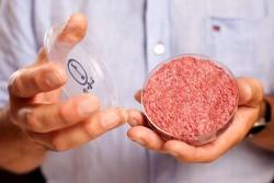 Новая гастрономическая реальность: бургеры с искусственным мясом