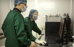 В Японии планируют вырастить в свинье человеческую поджелудочную железу